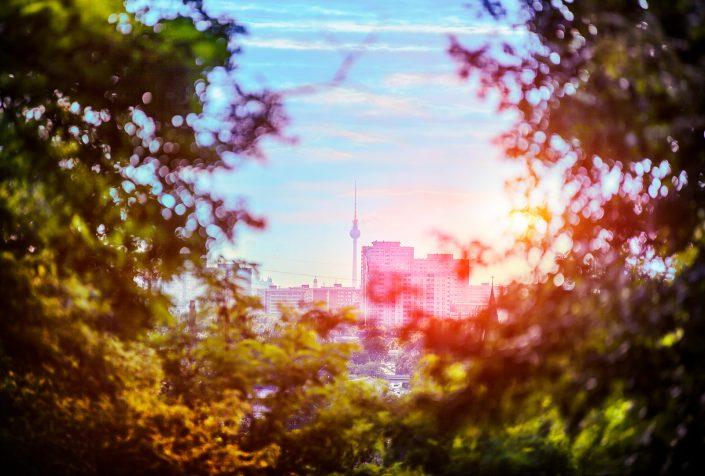 Berlin City Jungle